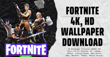 fortnite wallpaper features image