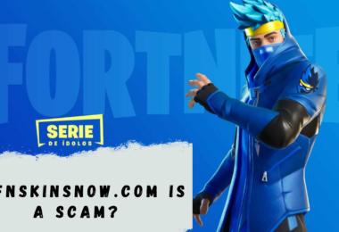 Is fnskinsnow.com