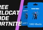Top 3 Ways To Buy A Used FREE WILDCAT CODE FORTNITE